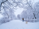 Прогулка по снегу